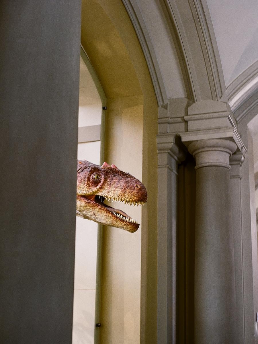 Kann man Dinosaurier zum Leben erwecken?